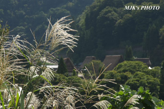 gokayama2646.jpg