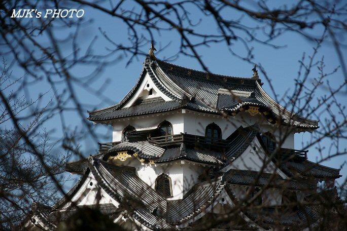 hikone00204.jpg
