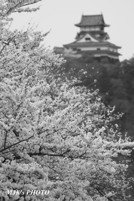 inuyama3031.jpg