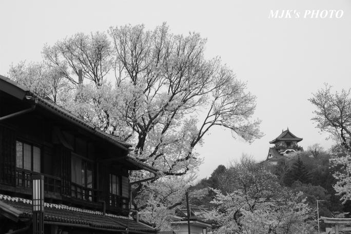 inuyama3035.jpg