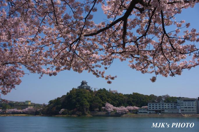 inuyamajo1293.jpg