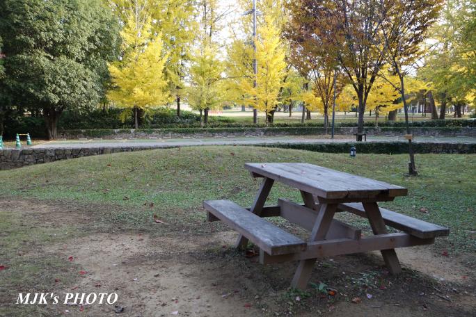mypark3658.jpg
