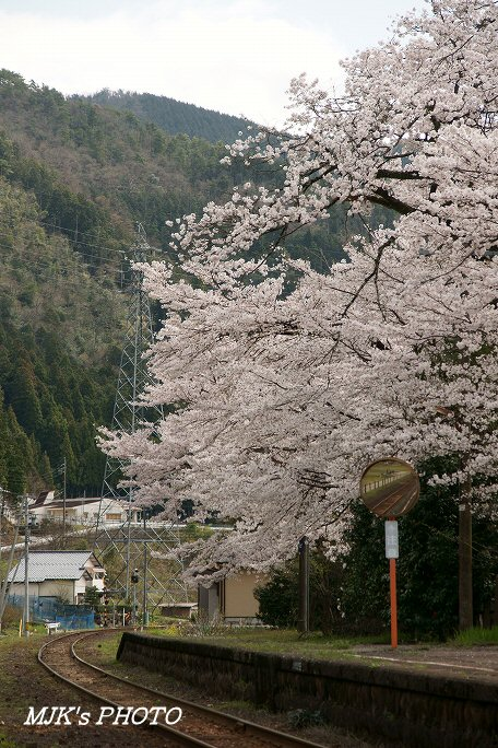 nagaragawatetsudou00432.jpg