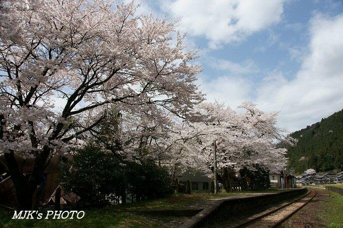 nagaragawatetsudou00433.jpg