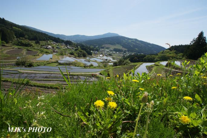 sakaori4118.jpg
