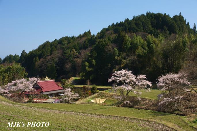 satoyama1344.jpg