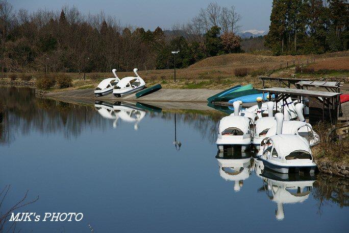 showamura00384.jpg