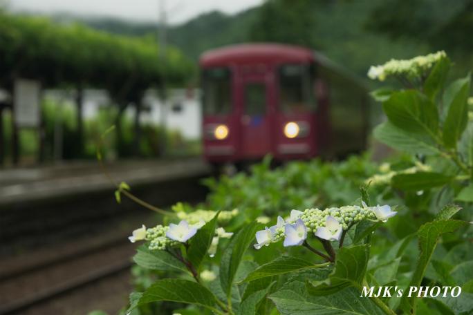 chotetsu2356.jpg