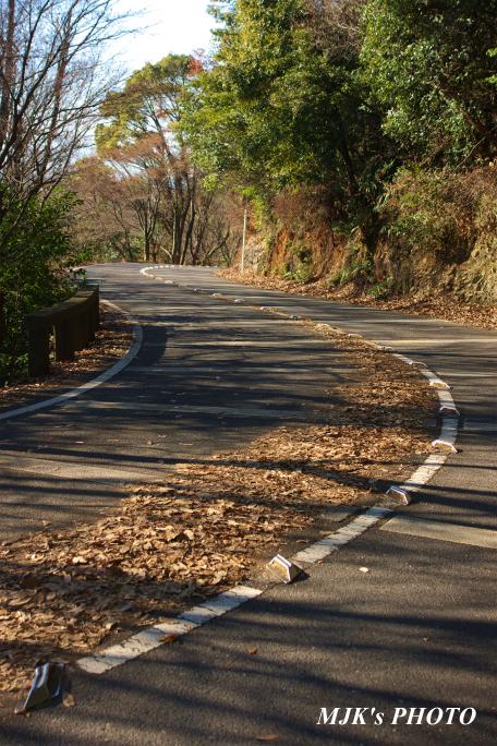 driveway1075.jpg