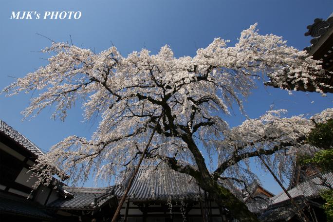 enmyouji4001.jpg