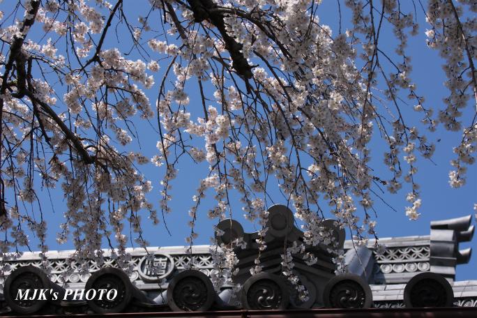 enmyouji4003.jpg