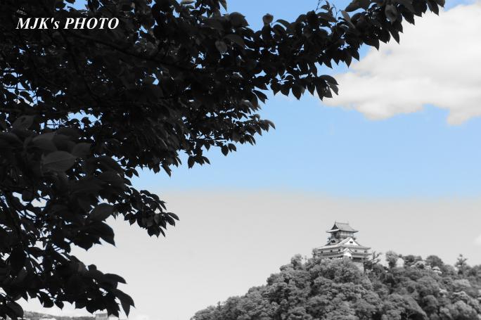 inuyama2244.jpg