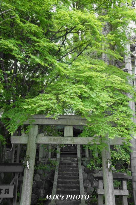 inuyama2245.jpg