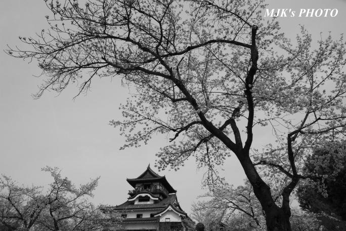 inuyama3034.jpg