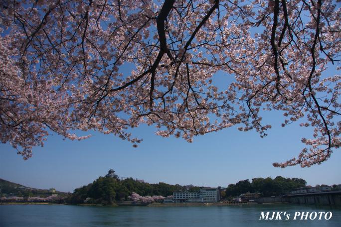 inuyamajo1294.jpg