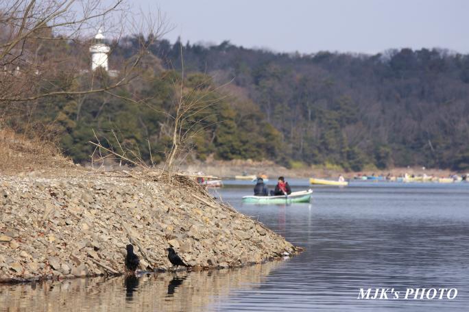 irukaike2003.jpg