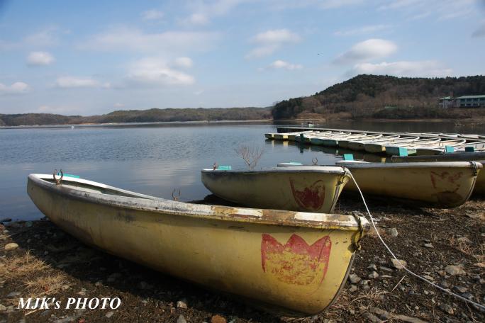 irukaike2007.jpg