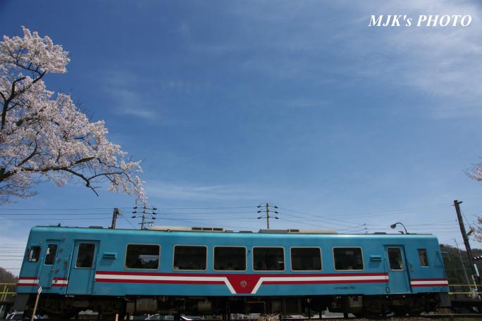 kochibora2197.jpg