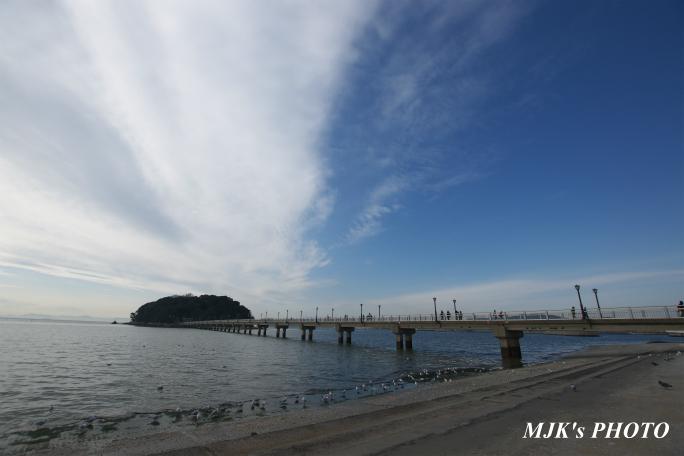 mikawawan2853.jpg