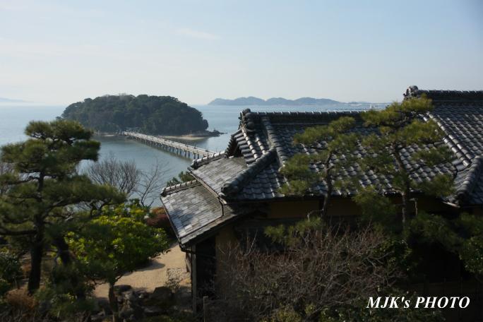 mikawawan2854.jpg