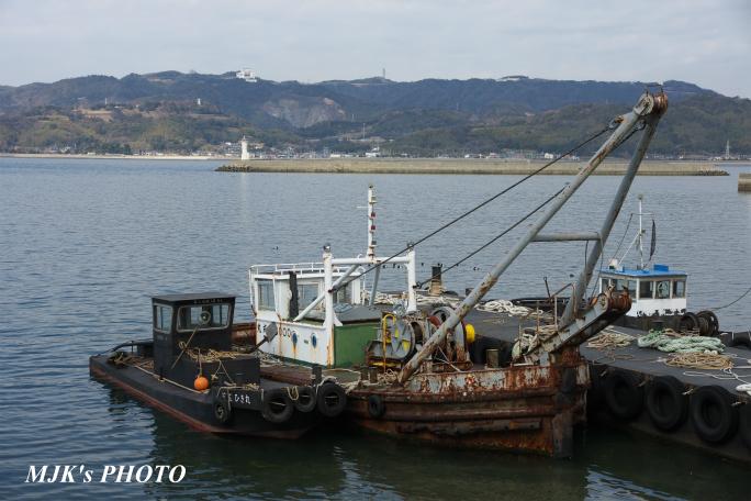 mikawawan2857.jpg