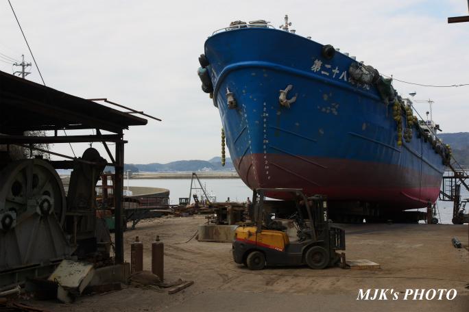 mikawawan2858.jpg