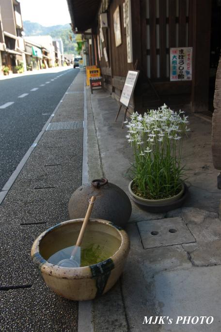 minomachi00739.jpg