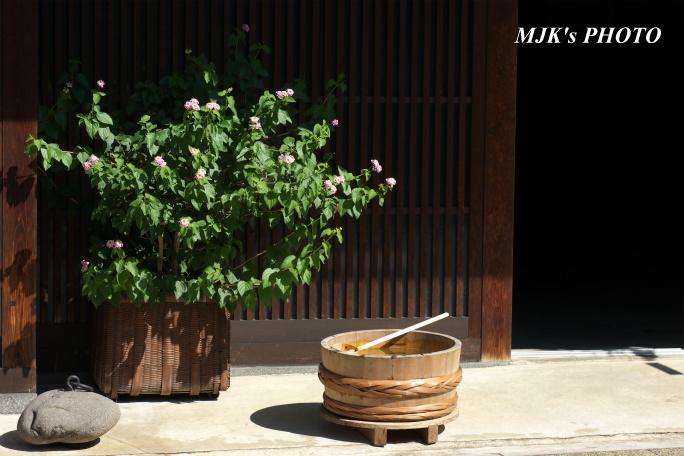 minomachi00742.jpg