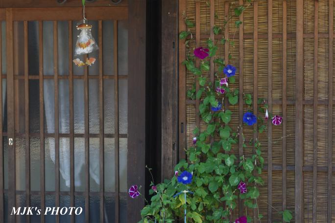 minomachi00744.jpg