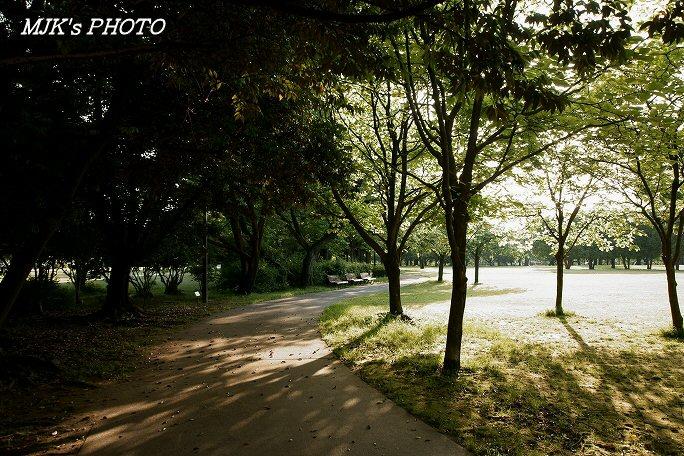 mypark00503.jpg
