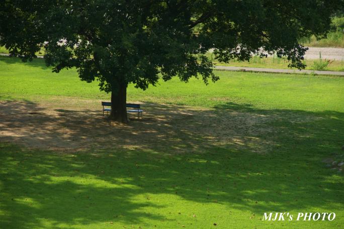 mypark1640.jpg