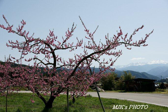 norikura00474.jpg