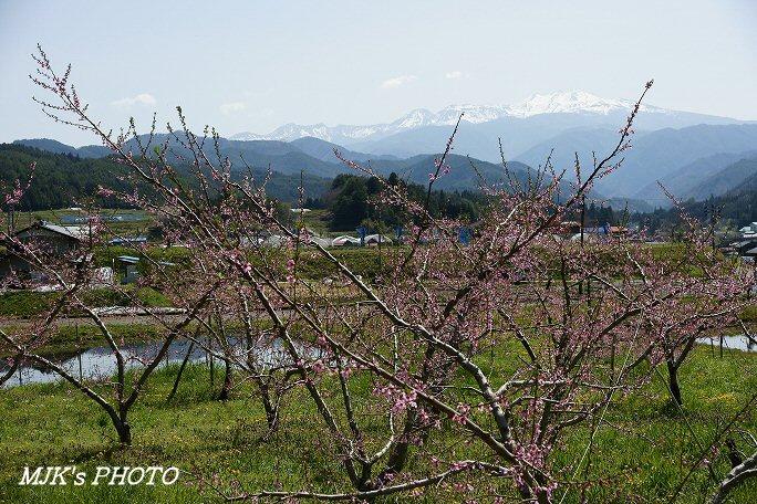 norikura00475.jpg