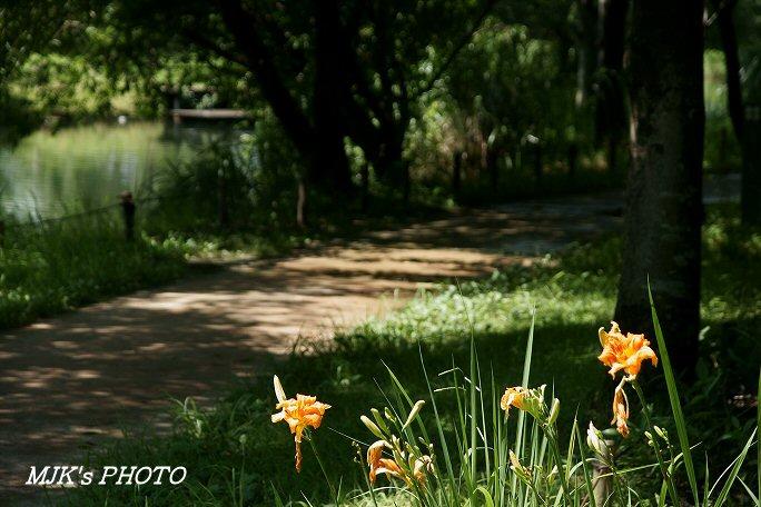 oasyspark00610.jpg