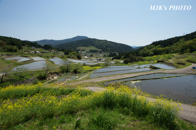 sakaori2236.jpg
