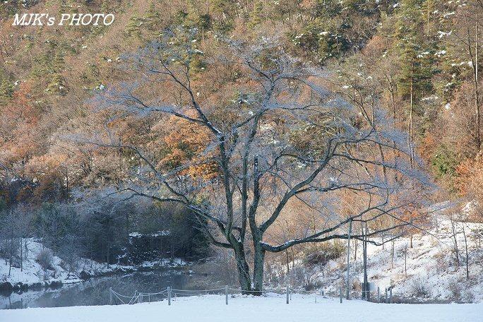 satoyama00114.jpg