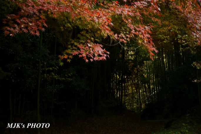 satoyama1034.jpg