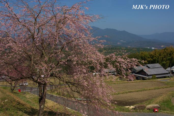 satoyama1349.jpg