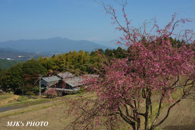 satoyama1350.jpg