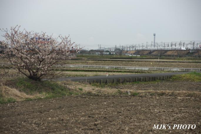 shinkansen2100.jpg