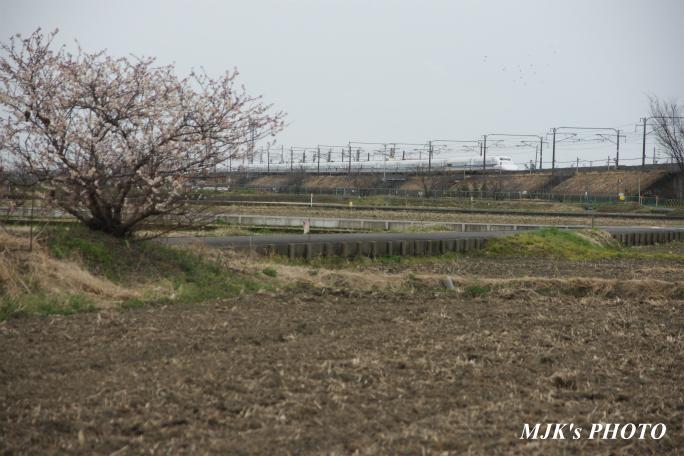 shinkansen2103.jpg