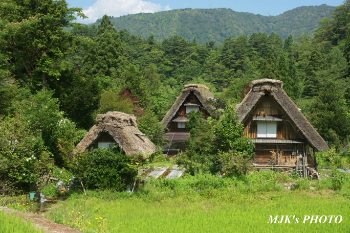 shirakawago4356.jpg