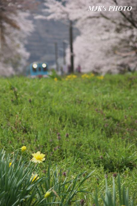 tanigumiguchi2180.jpg