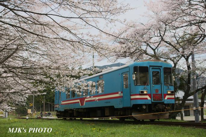 tanigumiguchi2185.jpg