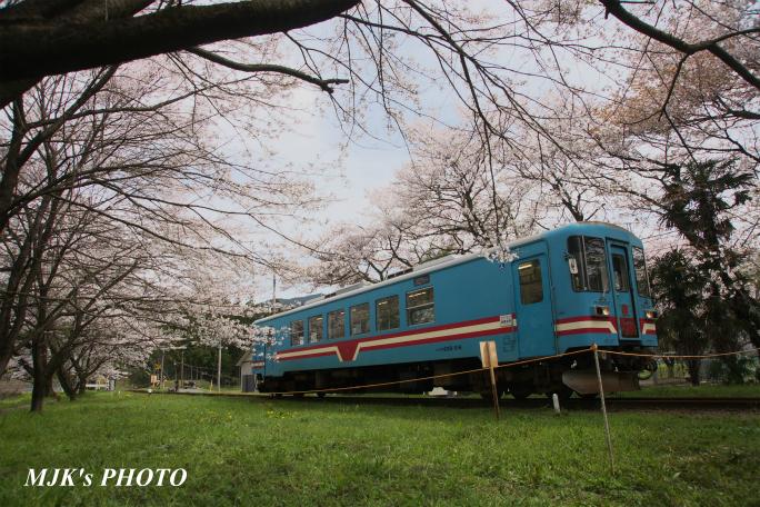 tanigumiguchi2186.jpg
