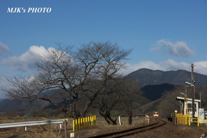 tarumi3910.jpg